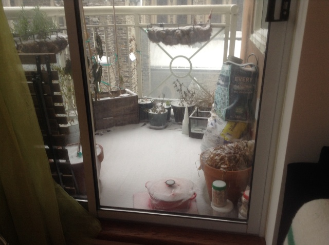 Winter on the balcony